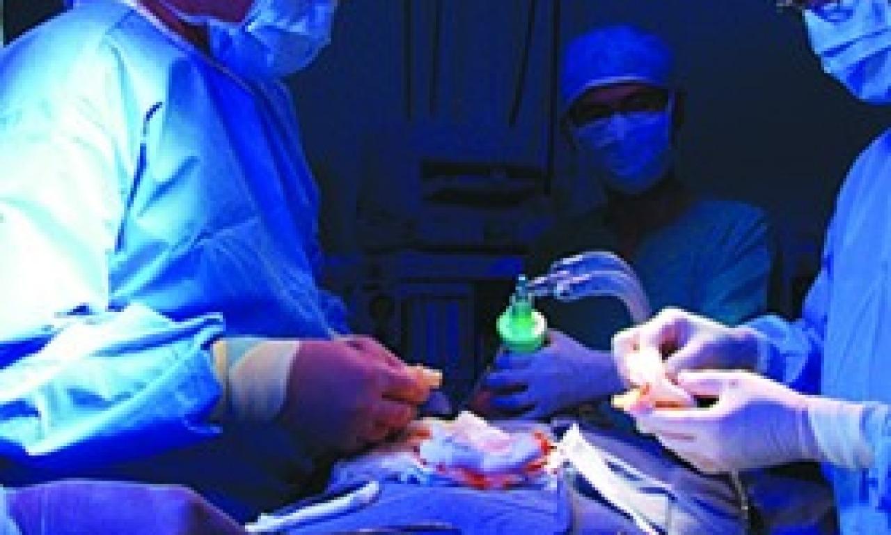 Quanta vita in più dai trapianti di fegato