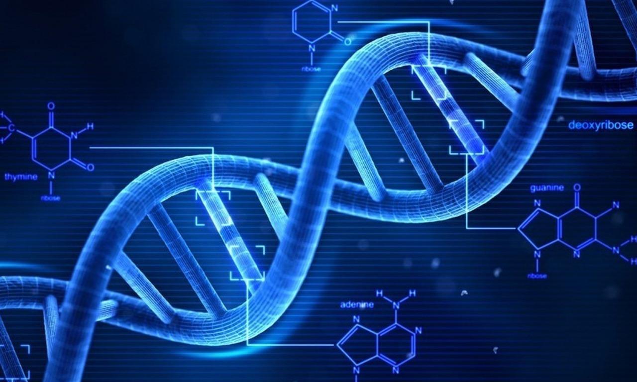 Brevettate il DNA?