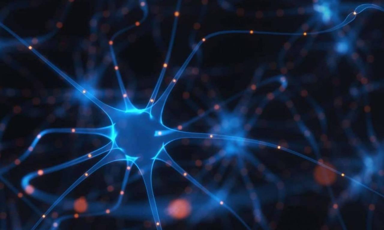 Lotta alla sclerosi multipla