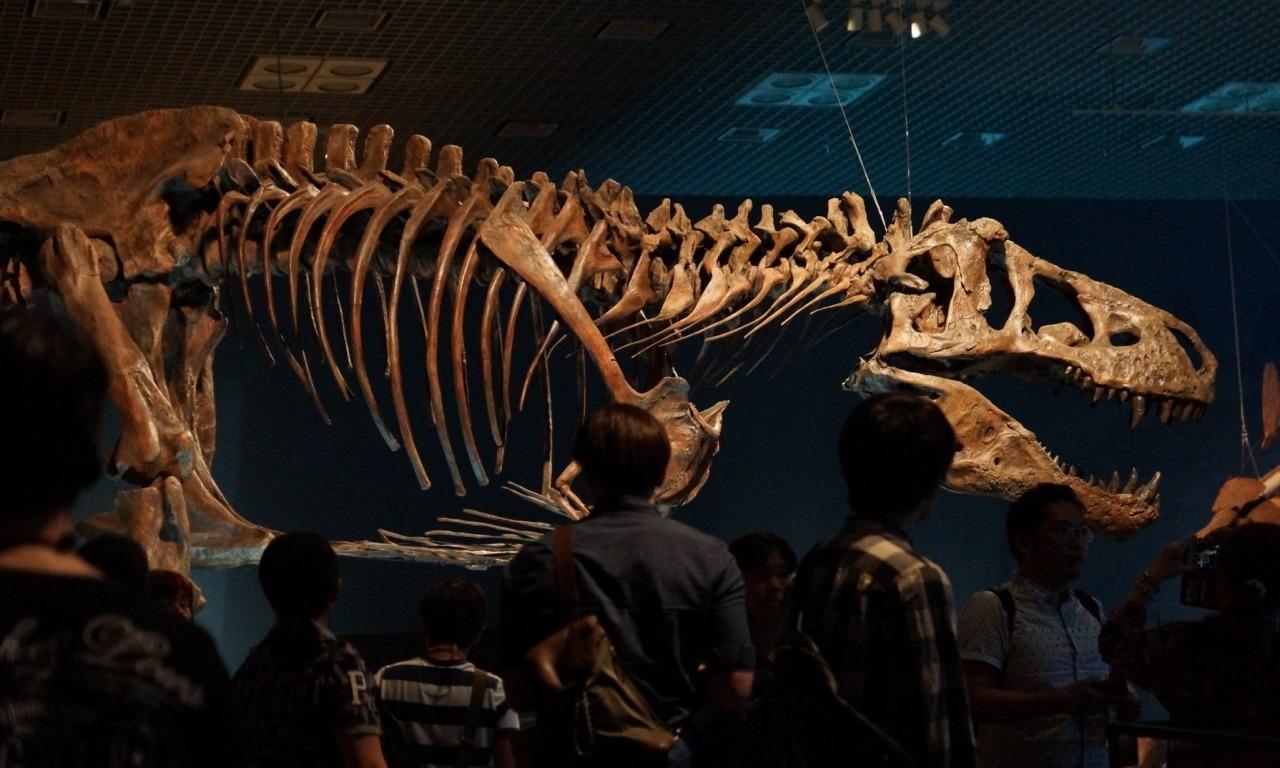 Il grande successo dei dinosauri